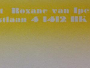 YVV-Yellow-800x6006